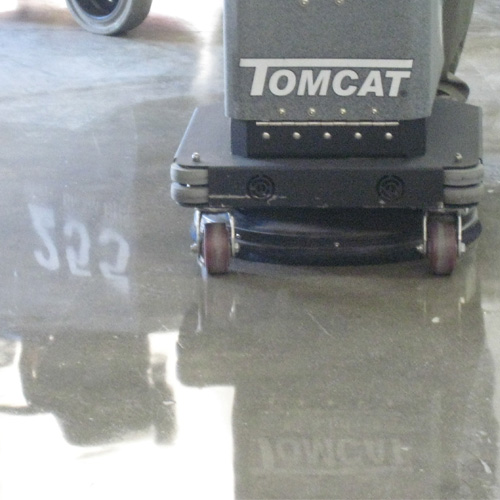 Tomcat 200 Walk Behind Floor Burnisher